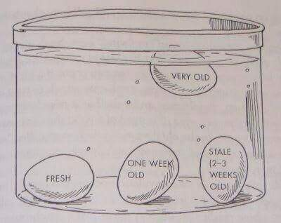 egg-age-test01