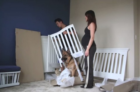 pregnant-to-baby-time-lapse02