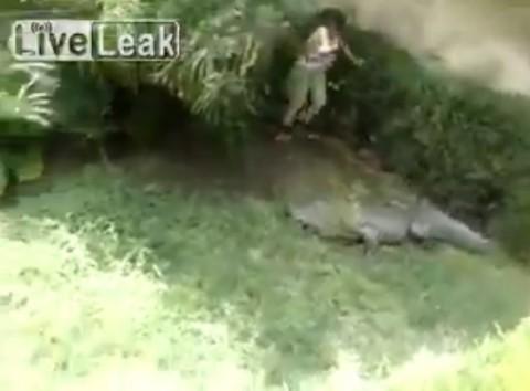 girl-enters-crocodile-enclosure03